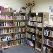 biblioteka-w-stanach